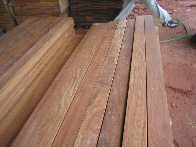 Cumaru Brazilian Teak 171 Sabra International